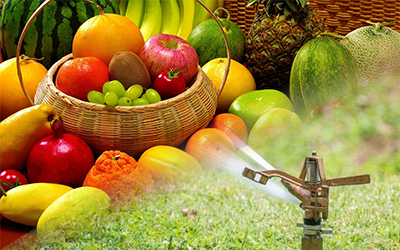 Agro Products & Equipments